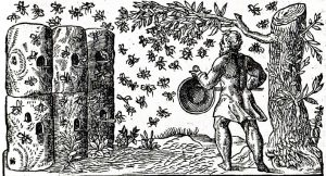 1-french-apiary-1560